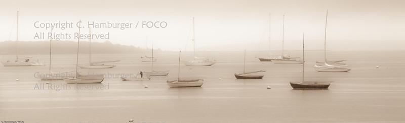 Bristol Mist