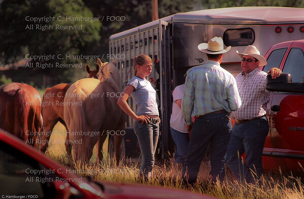 Montana Rodeo