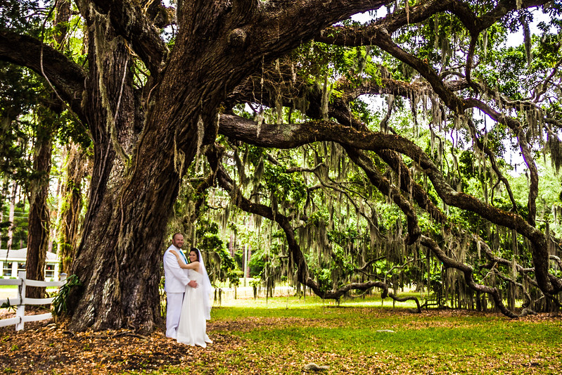 This great oak tree was the perfect setting for Cindy and Bubba to reminisce about their wedding moments before.