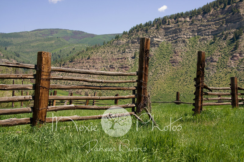 Meadow Mountain Corral in Summer - Minturn, Colorado