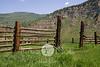 Meadow Mountain Corral in Summer - Minturn, Colorado