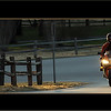 """See more Cool Motorbikes:<br />  <a href=""""http://www.salehphotography.com/Sports/Motorbikes"""">http://www.salehphotography.com/Sports/Motorbikes</a>"""