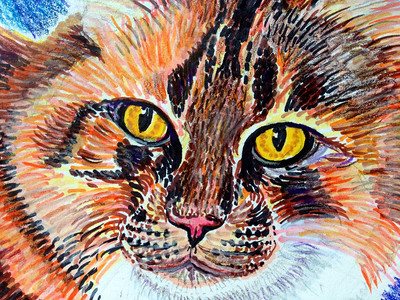 "Alex (Detail) Prismacolor media, Sharpies 14"" x 17"" Private commission, San Ramon, CA"