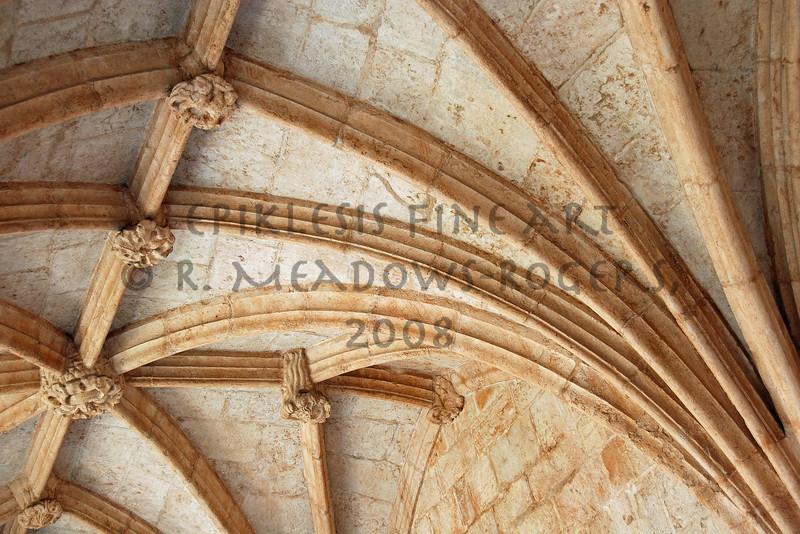 <center>© R. Meadows-Rogers, 2008</center>