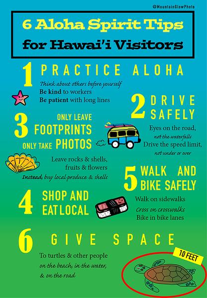 Hawaii Responsible Tourist Flier