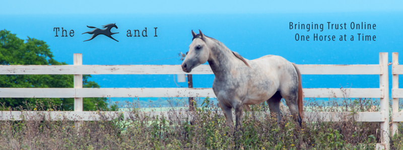 The Horse and I website banner