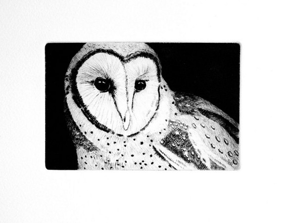 "Barn Owl, No. 3 of 20 <br /> <br /> Dry-point on copper, printed on white Arches ""Cover"" etching paper with Graphic Chemical's ""Portland Black"" etching ink."