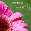 be yourself Pink daisy 8x10