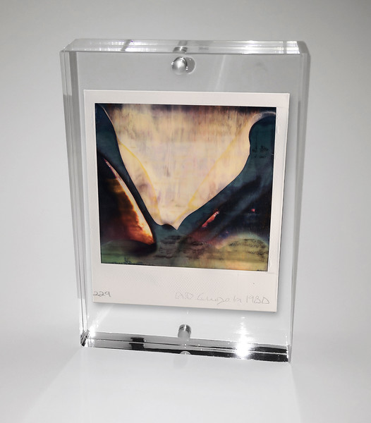 ORIGINAL POLARIOD IN ACRYLIC