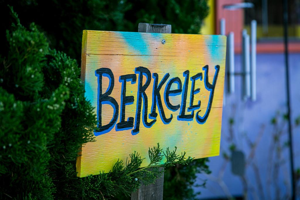 Quirky Berkeley 02-15-16