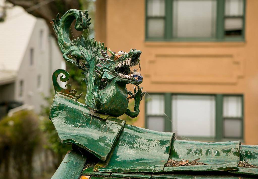 Quirky Berkeley 05--07-2015