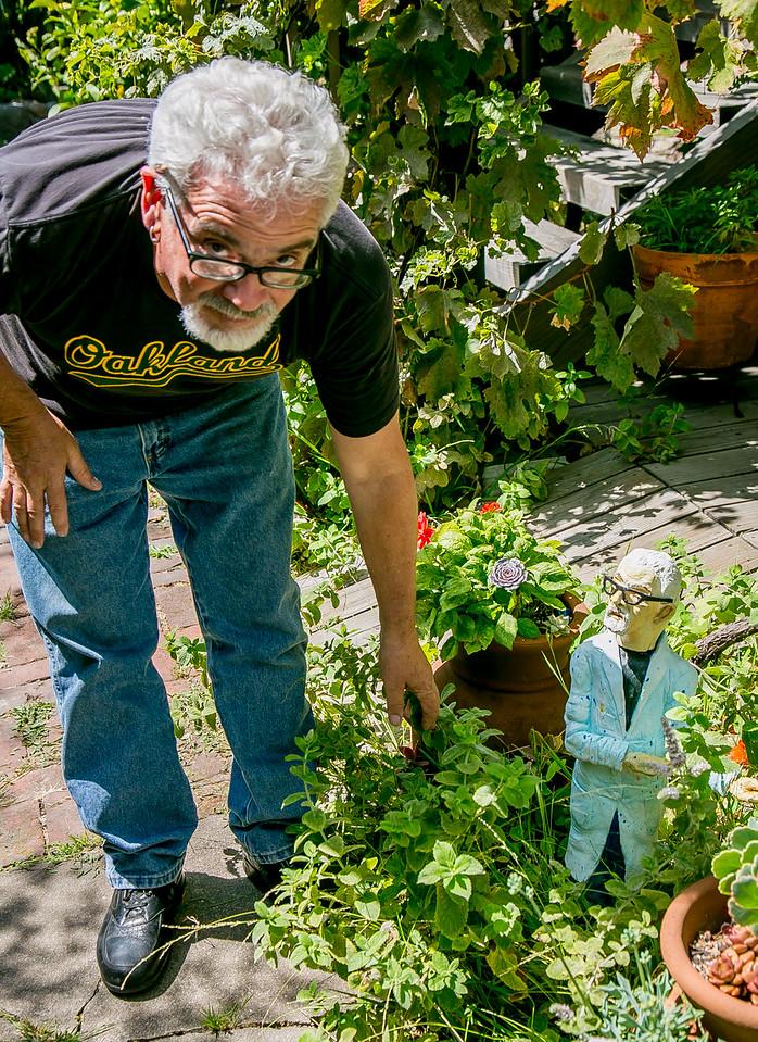 Quirky Berkeley 09-26-2015