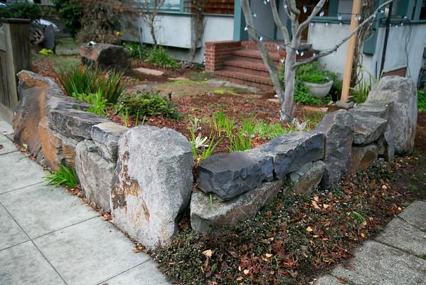 Quirky Berkeley 12-30-2015