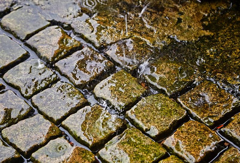 Wet Cobblestones at James Watt Dock, Greenock - 12 August 2016