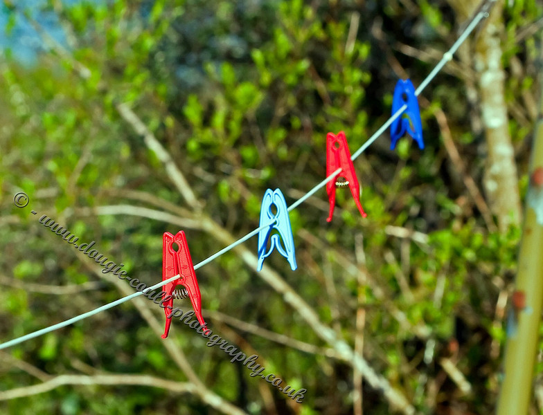 Pegs in a Row
