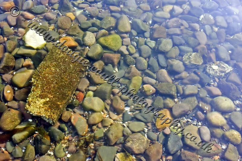 Pebbles Through Water