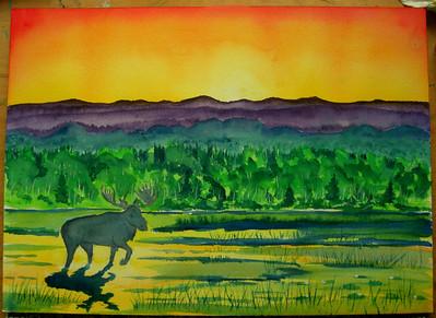 6 Adirondack Moose at sunrise, 10x14 watercolor  may 23, 2013 CIMG8687