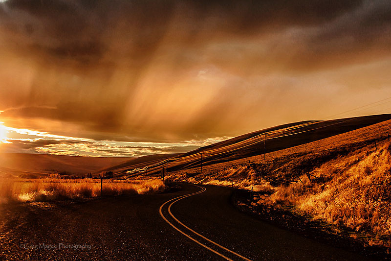 Golden highway