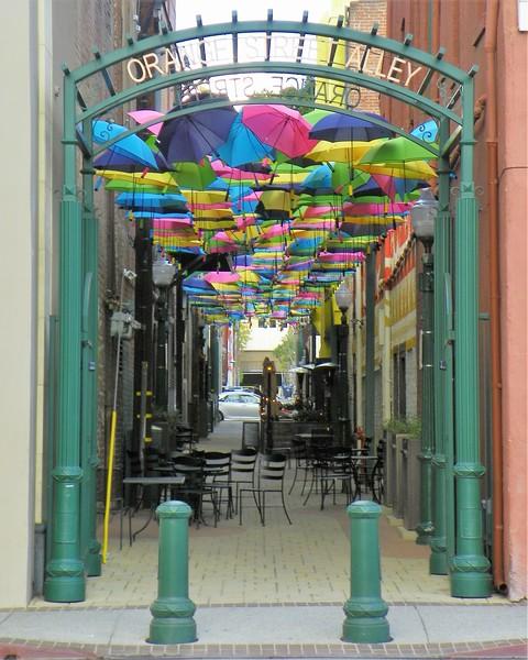 Redland's Umbrella Alley - 1