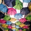 Redland's Umbrella Alley - 9