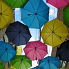 Redland's Umbrella Alley - 17