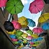 Redland's Umbrella Alley - 5
