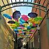 Redland's Umbrella Alley - 3