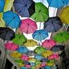Redland's Umbrella Alley - 15