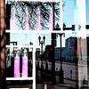 Reflections_0002-Edit-2
