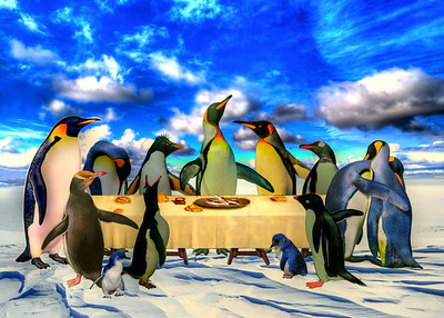 """Penguins' Last Supper """"L'Ultima Cena di Pinguinos"""" - Somewhat faded when first discovered, this magnificent painting of the King penguin and his twelve disciples at a supper gathering has been carefully restored to near original state by skilled Italian specialists. The penguin subjects are portrayed with a distinctive sensitivity and haunting compassion. Art critics and avian scientists speculate that the subject matter depicts a heated discussion over declining ocean resources. They suggest that this composition also provides empirical evidence that many more species of penguins congregated together than current species distribution would suggest. This rare painting by Guillermo Eduardo provides ethnologists and practitioners of penguin cultural anthropology with much to ponder."""