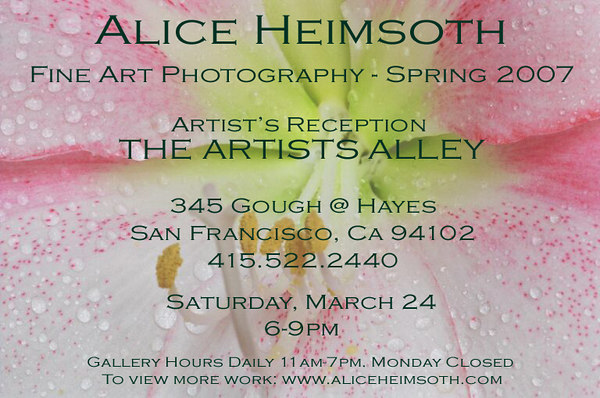 """<i class=""""nav"""">Spring 2007</i> <h3><a href=""""http://www.theartistsalley.com/"""">THE ARTISTS ALLEY</a></h3> 345 Gough Street, San Francisco, CA  <i class=""""nav"""">Hours 11:00am to 7:00pm Tuesday-Sunday</i>  Opening Reception For The Artist: Saturday, March 24th    6-9pm"""