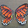 Butterflies - 13
