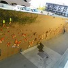 """View of """"more than 300 butterflies"""" from the 2nd floor of the adjacent parking structure."""