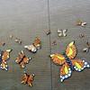 Butterflies - 16