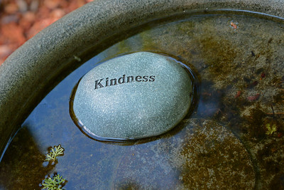 kindnesswater