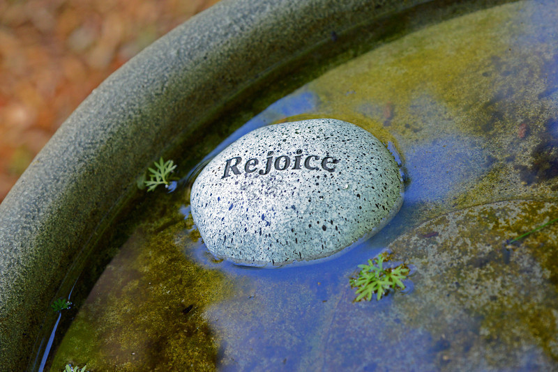 rejoicewater