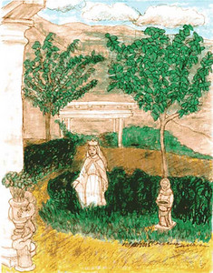 Marian Fahey's garden: sketched during the afternoon after her funeral at her home during the funeral lunch