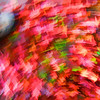 Leaf Swirl 3