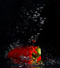 RED PEPPER #1<br /> Fish Tank Splash