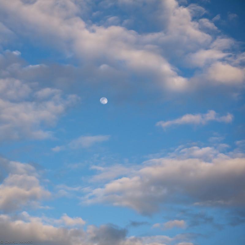 Moon rising - sun setting