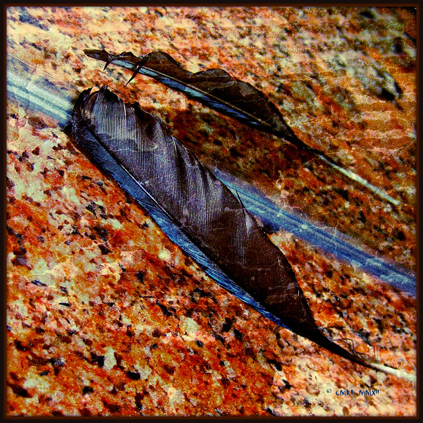 Ethan & Lei-Lei's Feather