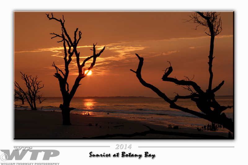 Sunrise at Botany Bay
