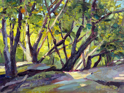 TheLedges9x12