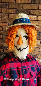 George the Scarecrow, Dane County, Wisconsin