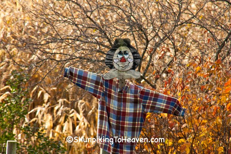 Autumn Scarecrow, Dane County, Wisconsin