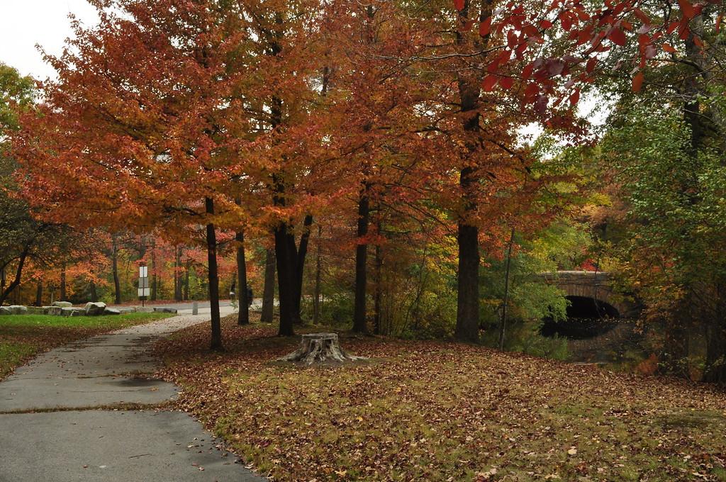 Franklin Park, Dorchester MA