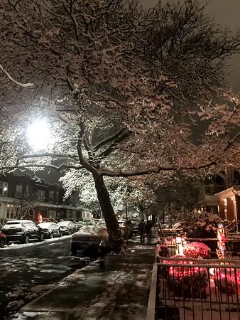 Snow Scenic in Bay Ridge Brooklyn