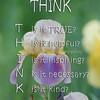 015 Think SM