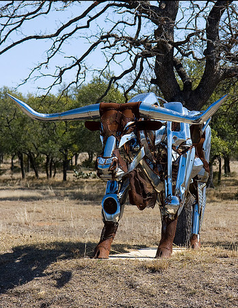 Paladin Paladin is the fifth in the Texas Longhorn Bull series of sculptures by Bettye Hamblen Turner. Each piece is unique in design and materials. All stainless steel and chrome pieces were welded by Turner using stainless wire with helium/argon/co2 gas in a MIG welder. I took these photos at location at Sculpture Ranch in Johnson City February 2009