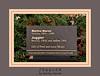Juggler 00<br /> Marino Marini (Italian, 1901-1980), bronze, 1954; cast before 1965<br /> .<br /> Frederik Meijer Gardens and Sculpture Park<br /> Grand Rapids, Michigan<br /> October 16, 2012